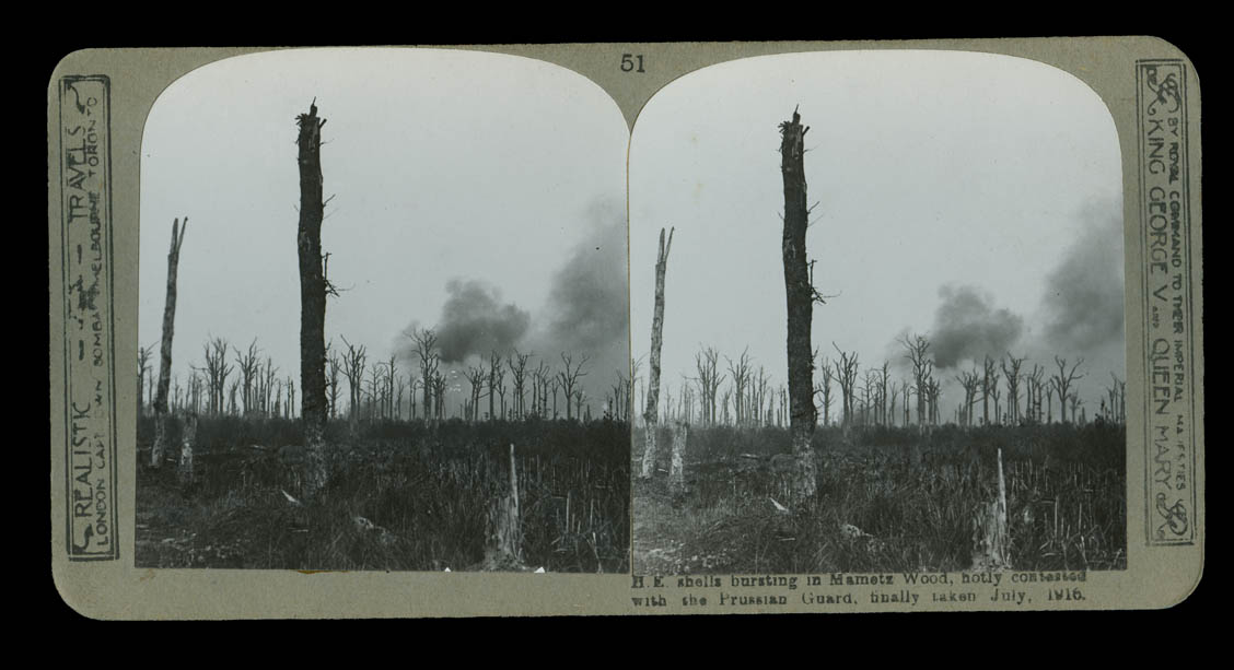 Stereoscopic view of Mametz Wood [courtesy Chris Morris]