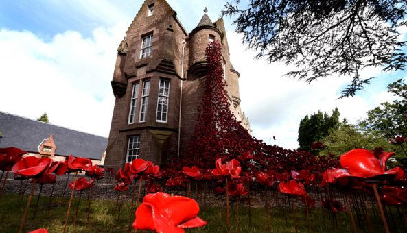 Poppy Sculpture Opens at The Black Watch Castle & Museum