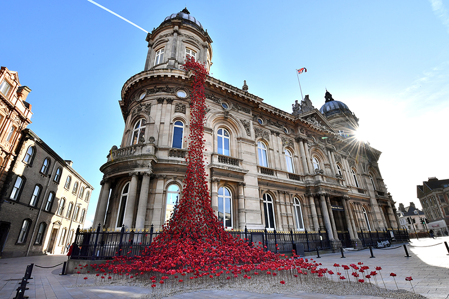 AD_Hull_Poppies_001_RESIZESMALLER