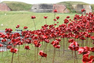 Iconic Poppy Sculpture: Wave Opens At Fort Nelson
