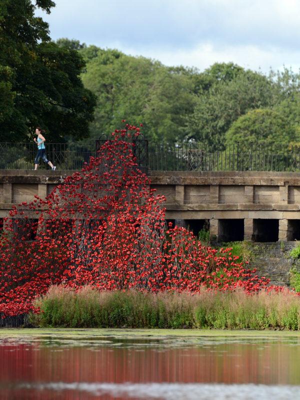Wave opens at Yorkshire Sculpture Park
